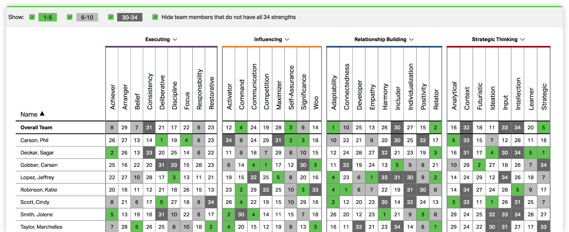 Screenshot of CliftonStrengths Teams Grid