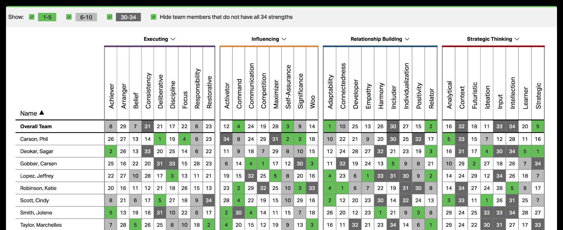 Screenshot of CliftonStrengths Teams Grid