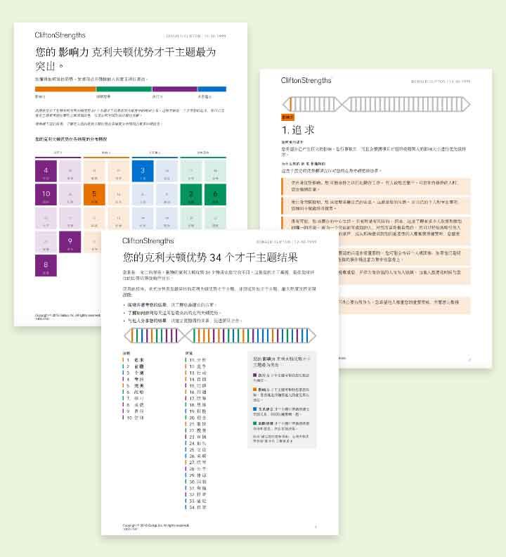 克利夫顿优势 34 个才干主题报告示例页面