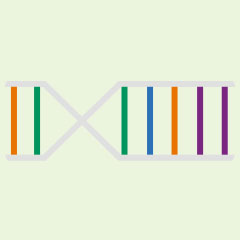 CliftonStrengths DNA Strand image.