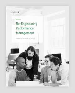 Cover of Re-Engineering Performance Management