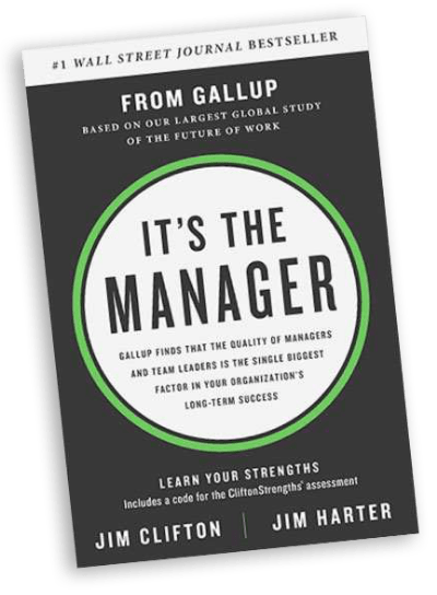 It's the Manager book cover