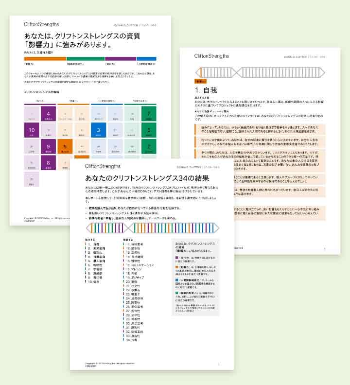 クリフトンストレングス34レポートのページ例