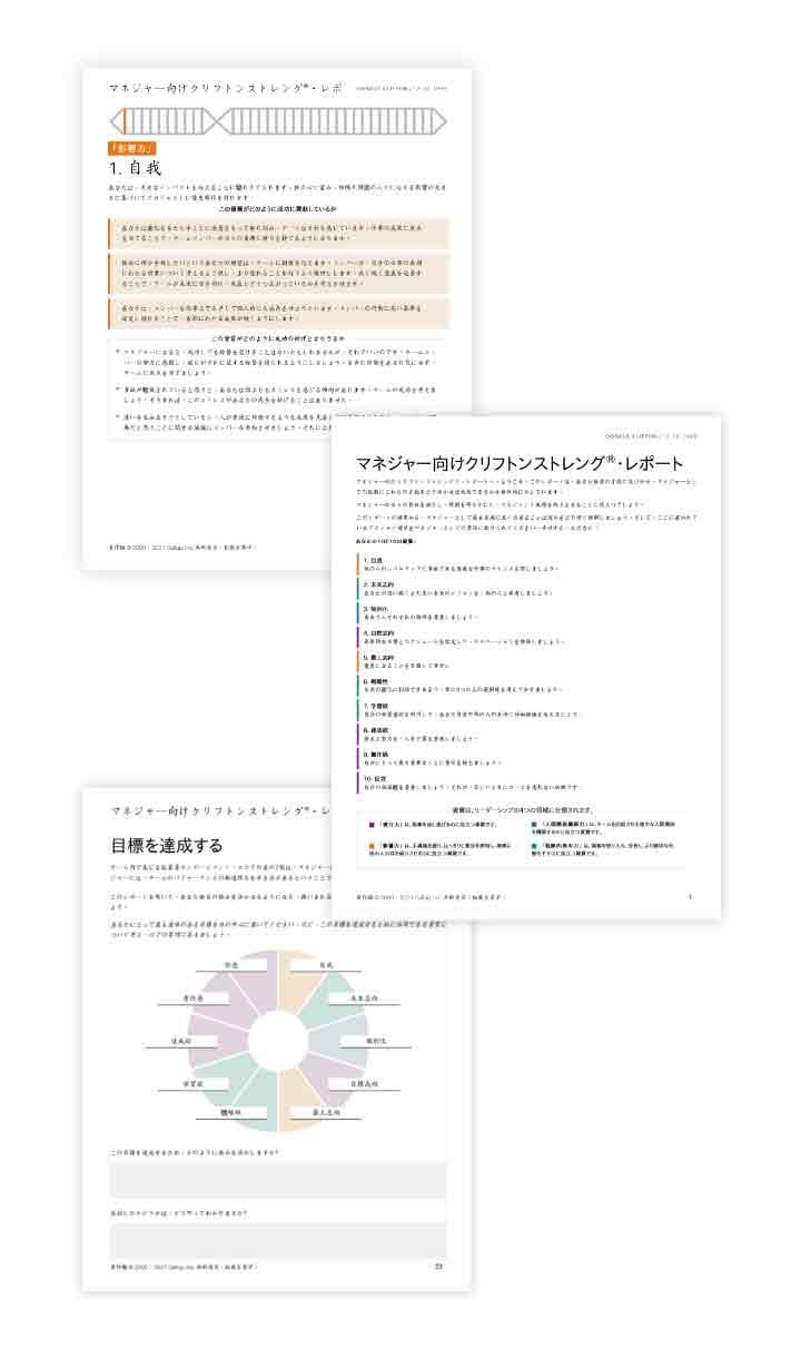 マネージャー向けクリフトンストレングスのページ例