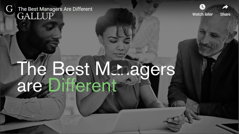 Play video: The Best Managers are Different