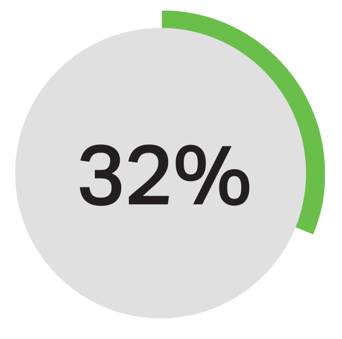 Pie chart showing 32%