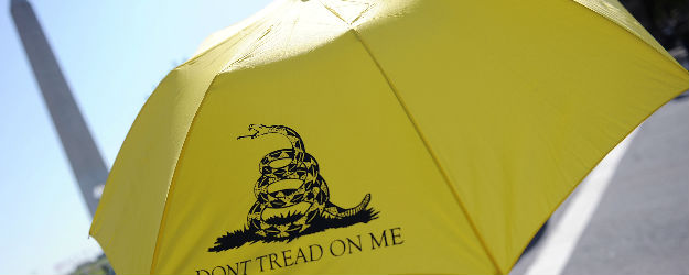 Four Years in, GOP Support for Tea Party Down to 41%