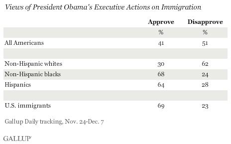 Views of President Obama's Executive Actions on Immigration