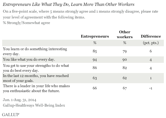 Entrepreneurs like what they do, learn more than other workers