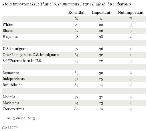 How Important Is It That U.S. Immigrants Learn English, by Subgroup, June-July 2013 results