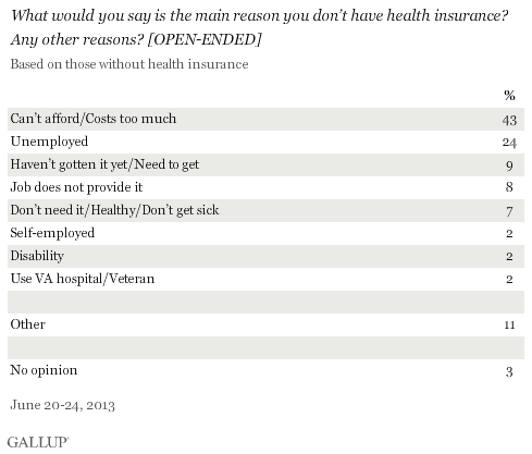 What would you say is the main reason you don't have health insurance? Any other reasons? [OPEN-ENDED]