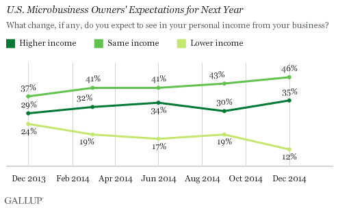 U.S. Microbusiness Owners' Expectations for Next Year