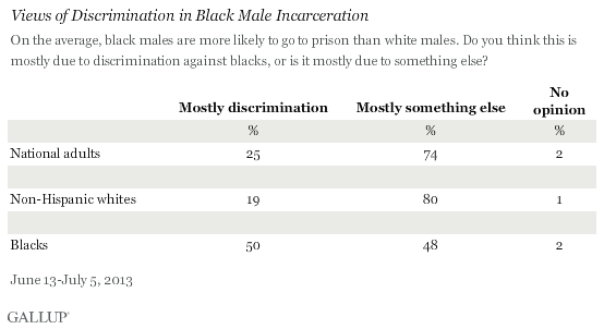 Views of Discrimination in Black Male Incarceration, June-July 2013