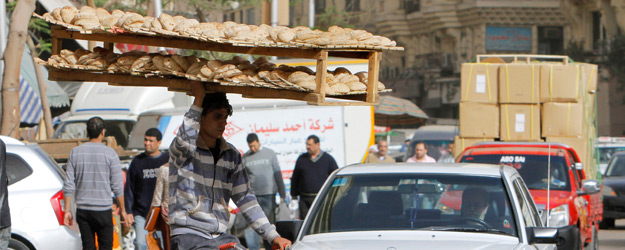 MENA Adults More Tolerant of Reforming Nonfood Subsidies
