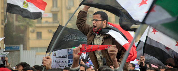 Opinion Briefing: Egyptians on the Arab Spring