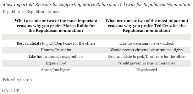 Most Important Reasons for Supporting Marco Rubio and Ted Cruz for Republican Nomination, February 2016