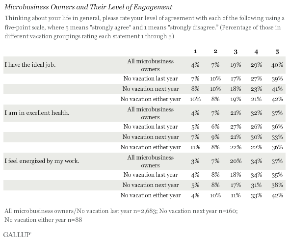 Microbusiness Owners and Their Level of Engagement