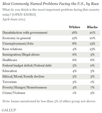 Most Commonly Named Problems Facing the U.S., by Race