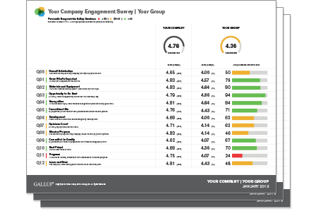 Gallup Q12 Employee Engagement Survey