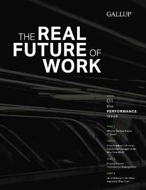 The Real Future of Work: The Performance Issue