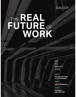 The Real Future of Work: The Agility Issue