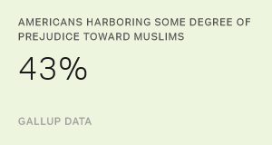 Perceptions of Muslims in the United States: a Review