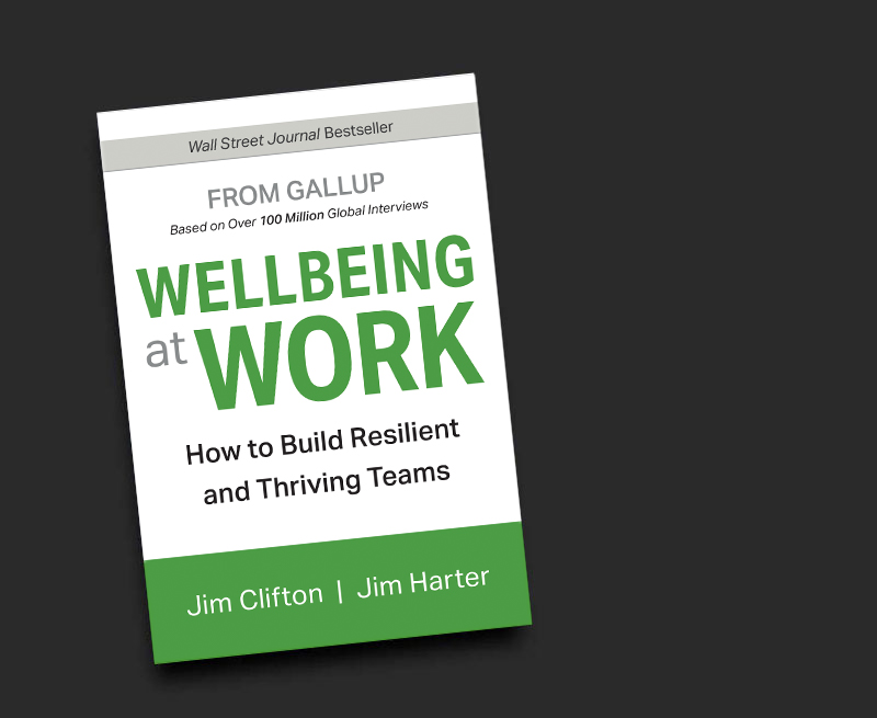 Image of Wellbeing Book