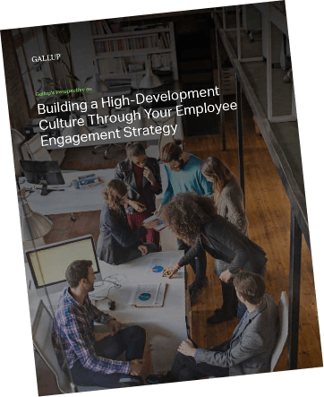 A report cover for the high-development and employee engagement perspective paper.
