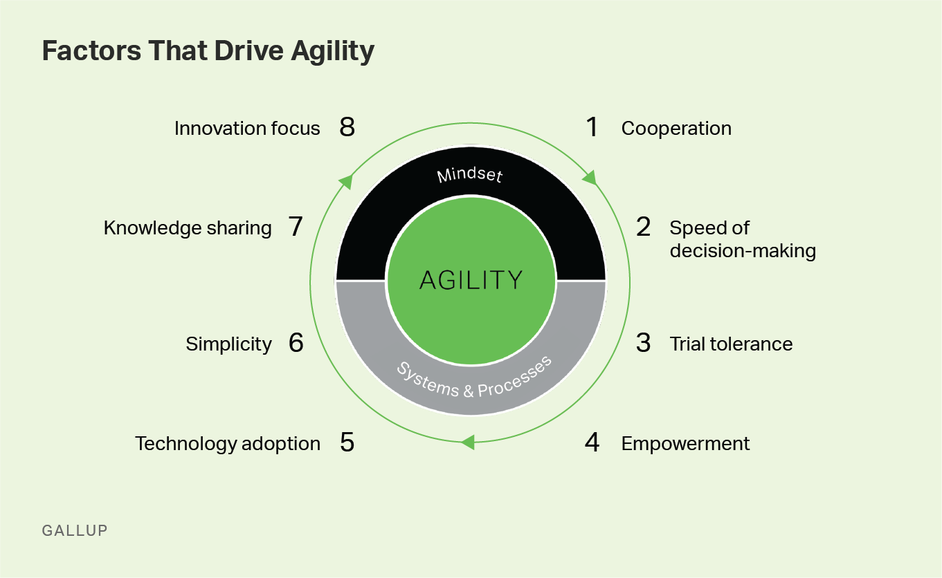 Factors That Drive Agility