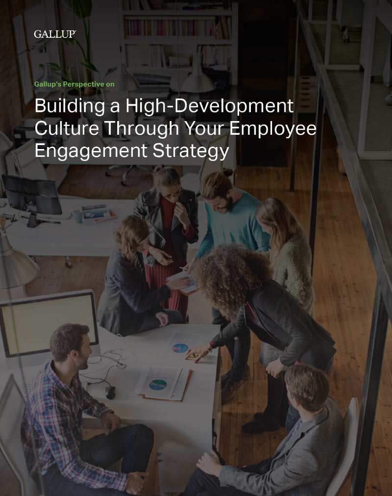 Report cover for Gallup's Perspective on How to Align Your Employee Compensation and Talent Management Strategies, featuring a manager working on a project with his team