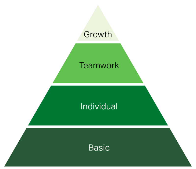 A green pyramid with 4 levels, basic, individual, teamwork and growth at the top