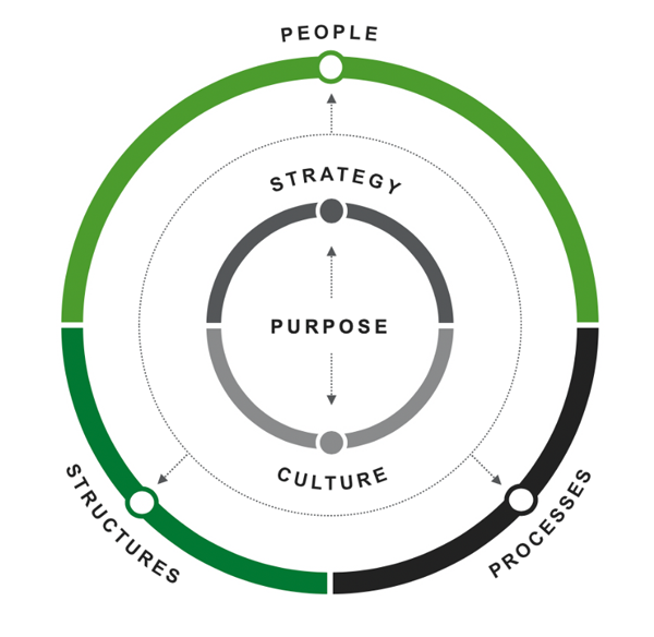Gallup's organizational effectiveness circle with purpose in the center, then strategy, culture, people, structure and processes on the outer circles.