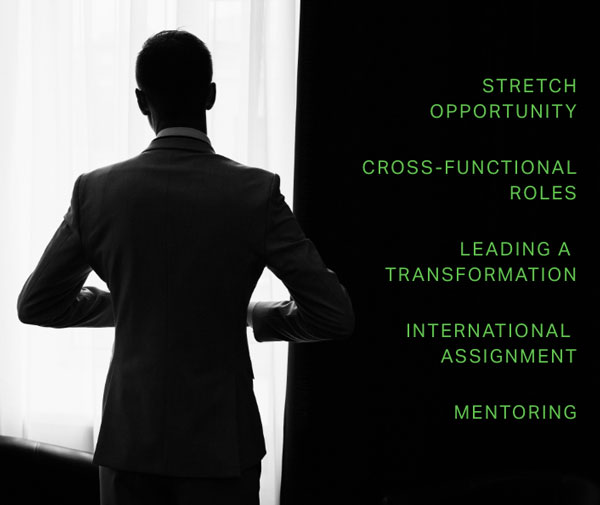 A list of bullets that say: stretch opportunity, cross-functional roles, leading a transformation, international assignment, mentoring.