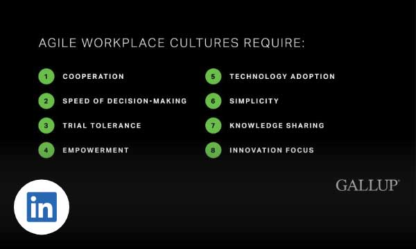 Homepage > Social > 20200803 > LinkedIn > Agile Culture